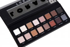 Here is Review Photo Swatches of Legendary LORAC Pro Palette